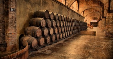 wine_cellar_old_man_stuff_1920x1200_hd-wallpaper-186156