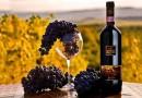 Помалку или повеќе познати факти за виното – дел 4