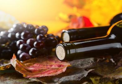 Правење вино во домашни услови