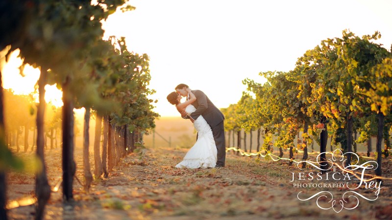 Silver-Horse-Winery-Wedding-37