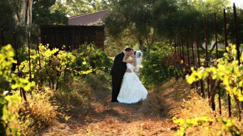 weddingVs-Bernardo Winery-sm