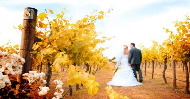 witchmount-vineyard-wedding