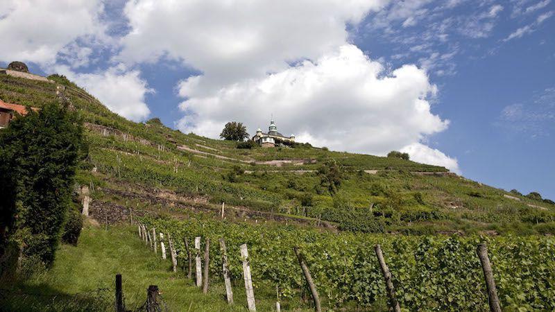 sachsen-german-wine-region-radebeul