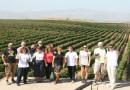 Најубавата винска приказна за Македонија раскажана од странец