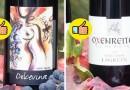 Шест митови и вистини за виното