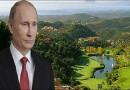 И Путин влезе во винскиот бизнис