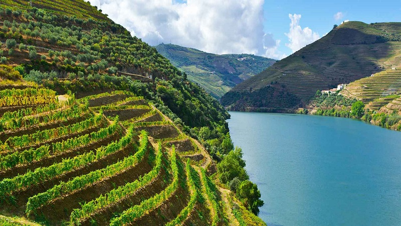 Douro-Valley-Portugal-Hero