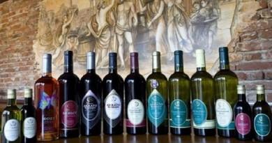 Семејната винска приказна на Дудин која стана синоним за вино