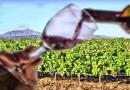 Сте пробале ли вулканско вино?