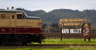 XkWlM04Bqr-ovoj-vinski-voz-ve-vodi-niz-vrvnite-lozovi-nasadi-na-kalifornija