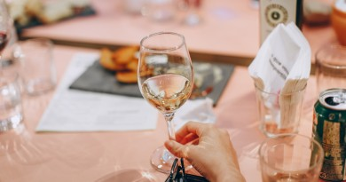 person-holding-wine-glass-near-clear-shot-glasses-696215