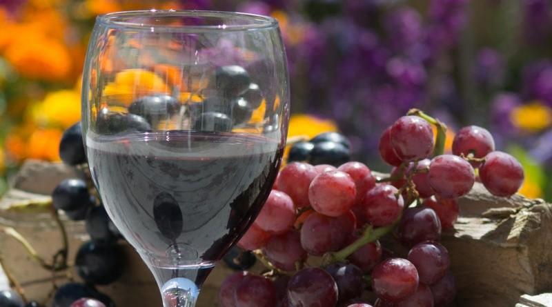 wine-fruit-food-glass-88691