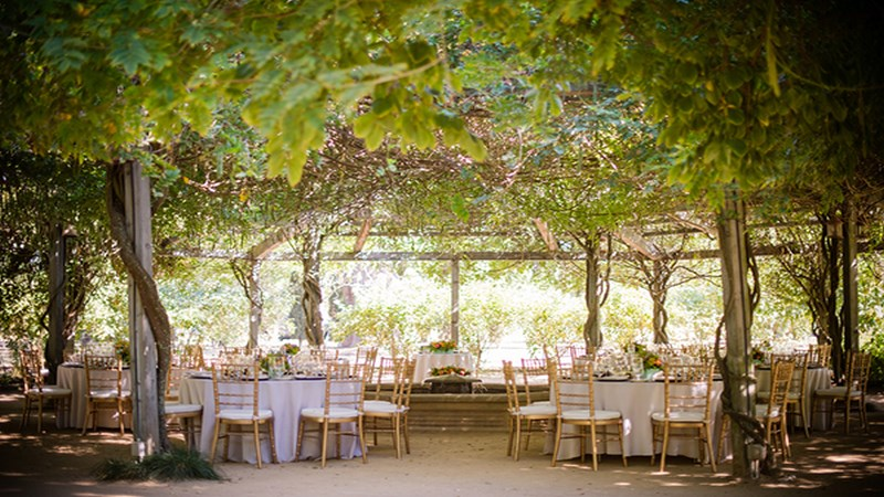 12-colorful-and-classic-vineyard-wedding-in-northern-california