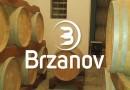 "Златна плакета за виното ""Артизан Кратошија"" на Брзанов"