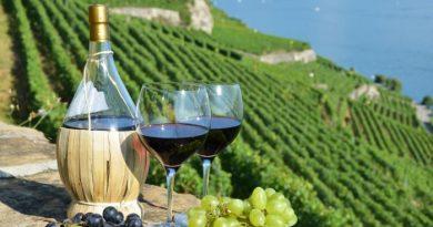 Зошто Италијанските вина се толку почитувани