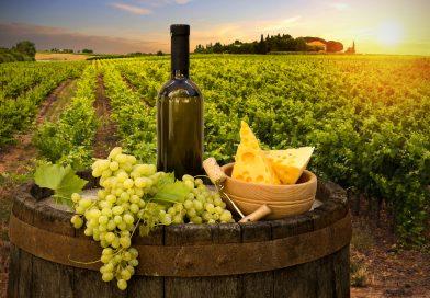 Виното во Македонија